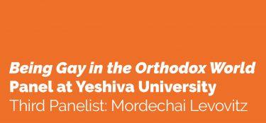 Third Panelist: Mordechai Levovitz